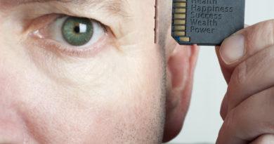 Как работает память человека