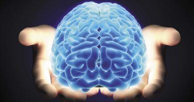 Как нас обманывает наш мозг