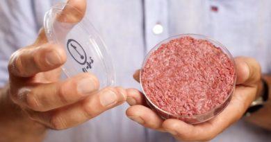 Искусственное мясо из пробирки