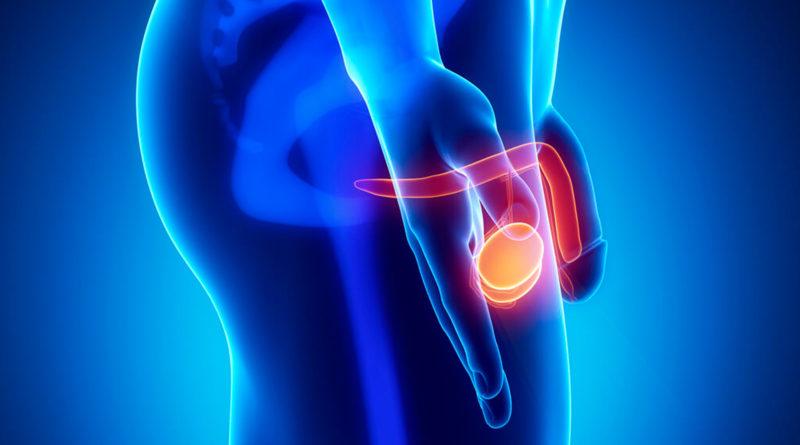 Половые инфекции и венерические заболевания